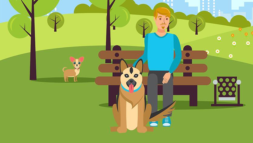 Ответственность за вред причиненный собакой